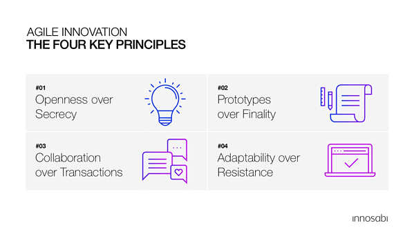 the four Principles of Agile Innovation